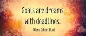 goals are dreams wiith deadlines